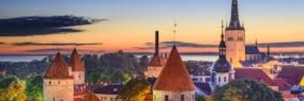 Should you start a business in Estonia?